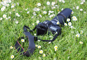 Blurred image. Professional camera on  the grass with flowers surround.