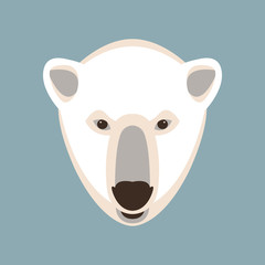 Polar bear head vector illustration  flat style
