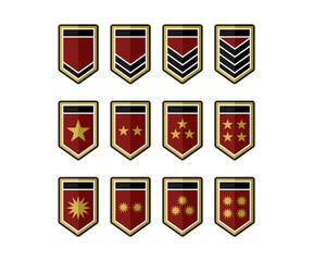 Shield Army Epaulets, Military Ranks and Insignia with Effect