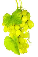 grappe de raisin blanc et feuilles de vigne, fond blanc