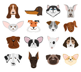 Dog and puppy heads set vector illustration