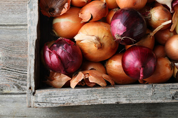 Onions roots in old crate