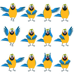 Flat set of Macaw icons
