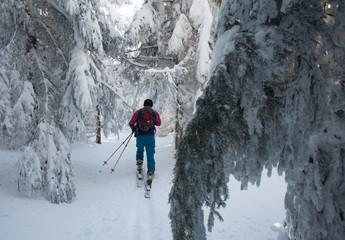 Skitouring w Masywie Śnieżka, Kotlina Kłodzka