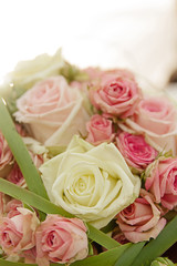 rosa Rosen in Brautstrauss bei Gegenlicht und Hochzeit