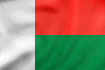 Flag of Madagascar waving, real fabric texture