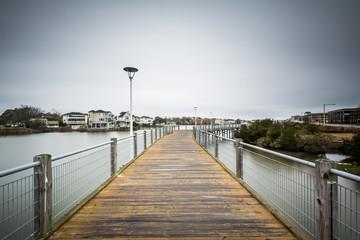 Boardwalk over Lake Holly, in Virginia Beach, Virginia.