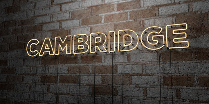 CAMBRIDGE - Glowing Neon Sign on stonework wall - 3D rendered royalty free stock illustration.  Can be used for online banner ads and direct mailers..