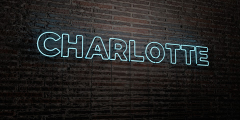 CHARLOTTE -Realistic Neon Sign on Brick Wall background - 3D rendered royalty free stock image. Can be used for online banner ads and direct mailers.. Wall mural