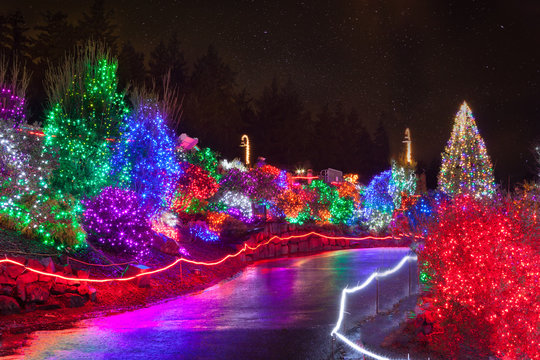 Zoolights at the Point Defiance Zoo in Tacoma, WA