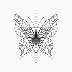 Vector graphical butterfly design.