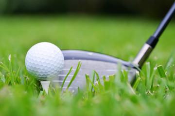 Golf Ball andDriver
