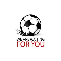 Soccer ball grass logotype