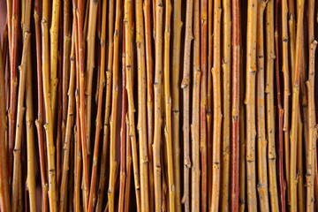Background of willow twigs. Yellow branches.
