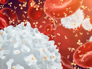 White , red blood cells and antibodies , Leukocytes , Infectious disease , Immune system
