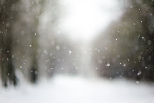 falling snow, blurred Christmas texture