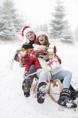 Weihnachten auf dem Schlitten