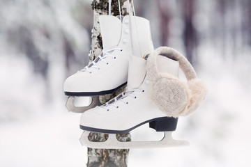 white skates hanging on a tree in a forest in winter