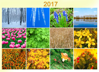 blank with twelve colored images of nature for calendar 2017