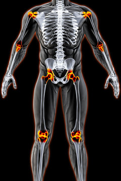 male body under the X-rays. joints are highlighted in red. 3D illustration.