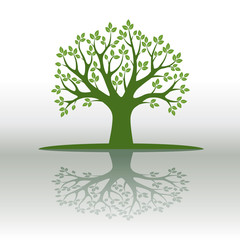 Green Vector Tree and Leafs. Vector Illustration.