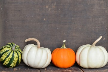 Variety of pumpkins, gourds and squash on wooden background
