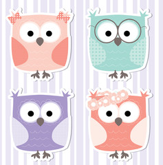 cute litte cartoon owls collection  / stickers set