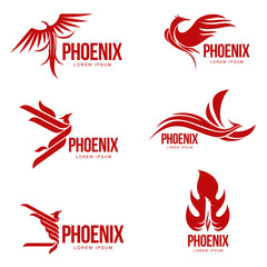 Set of stylized graphic phoenix bird logo templates, vector illustration isolated on white background. Collection of creative phoenix bird logotype templates, growth, development, power concept