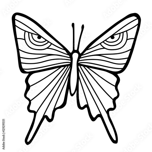 black outline butterfly in white background hand drawing sketch of insect