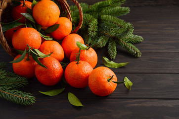 Fresh tangerine clementine with spices on dark wooden background, Christmas concept, selective focus, horizontal, copy space