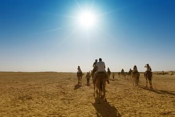 Sahara desert. Caravan of tourists passing desert lake on camels