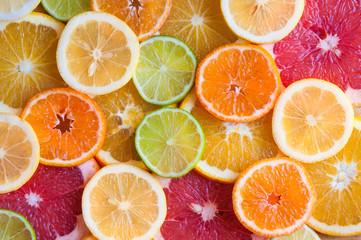 Slices of various citrus fruits (orange, grapeftuit, lemon, mandarine, lime) Fototapete