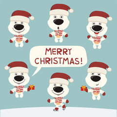 Merry Christmas! Vector set funny polar bear in christmas hat. Collection isolated polar bear.