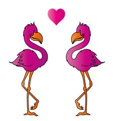 Flamingos in Love