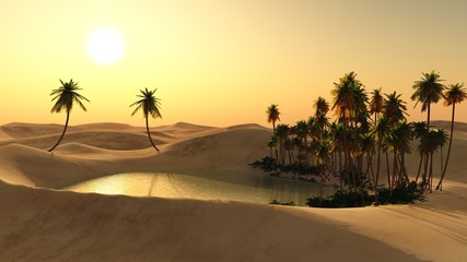 Oasis in the desert sand. Lake in the sands. Palm trees over the water.