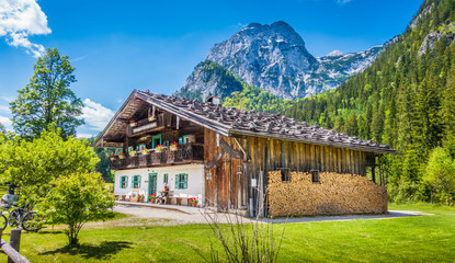 Wall Mural - Traditional farmhouse in the Alps in summer
