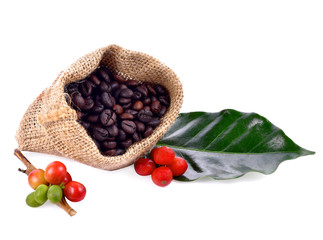 Wall Mural - Coffee beans and leaves on white background