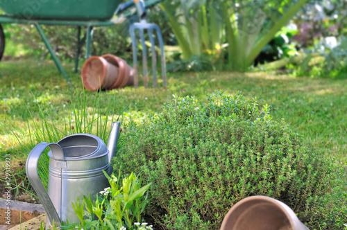 arrosoir dans herbes aromatique du jardin photo libre de droits sur la banque d 39 images. Black Bedroom Furniture Sets. Home Design Ideas