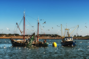 Fishing trawlers at work