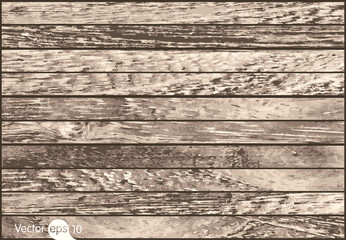 Wood Background Texture. Vector
