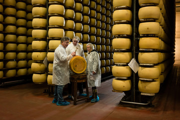 Group of men and women inspecting Parma cheese factory