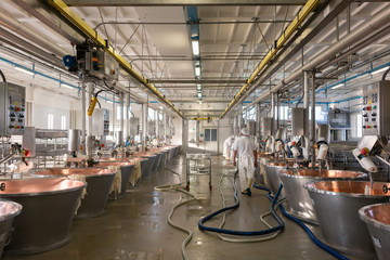 Hall in food factory where cheese is being made from curd in