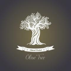 Foliage of olive oil tree in mediterranean greece