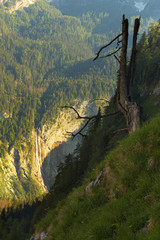 Mountain slope with a waterfall Röthbachfall in Berchtesgaden National Park, Germany