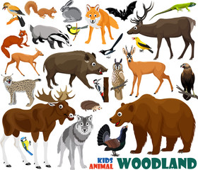 set of cute woodlands animals