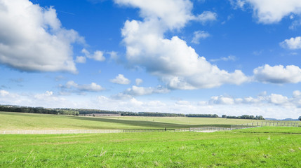 green field and blue sky.