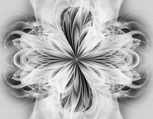 Abstract black-and-white image in the shape of a flower. Fractal. Many thin flower petals, arranged symmetrically.