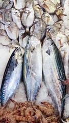Deniz Mahsulleri Balık