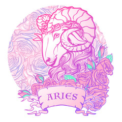 Zodiac sign of Aries. with a decorative frame of roses Astrology concept art. Tattoo design. Sketch in pastel pallette isolated on roses background. EPS10 vector illustration.
