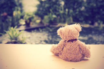 Alone teddy bear sit back on wooden floor with pool background
